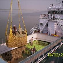 Cargo Movement